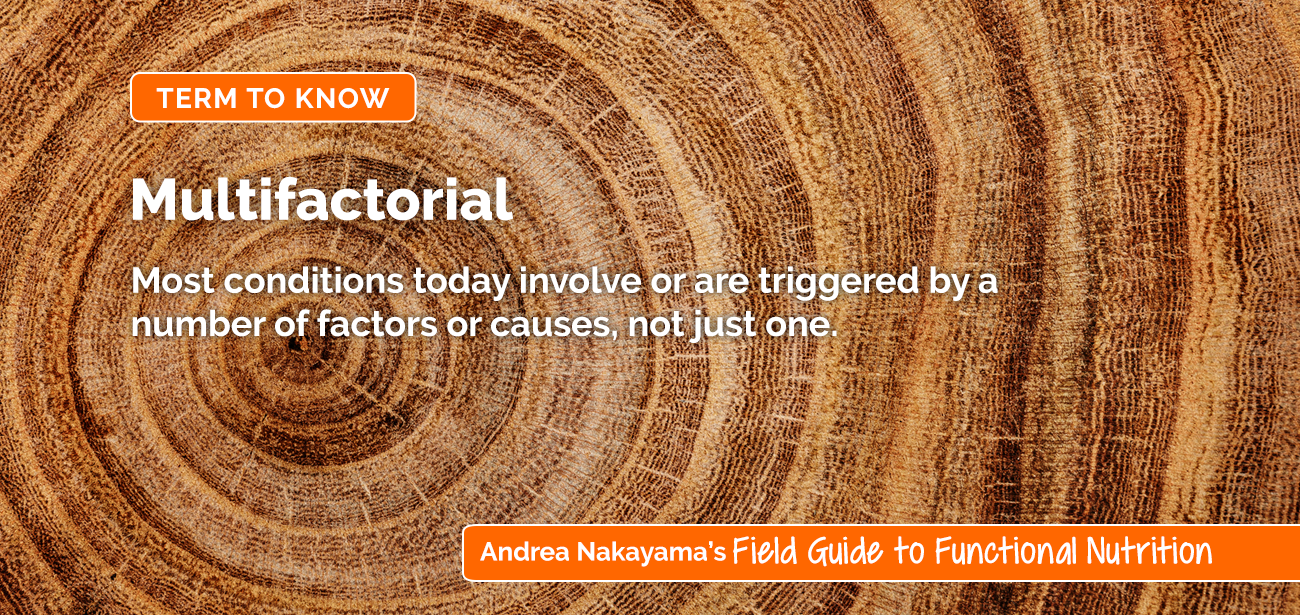 Andrea Nakayama's Field Guide to Functional Nutrition | Multifactorial