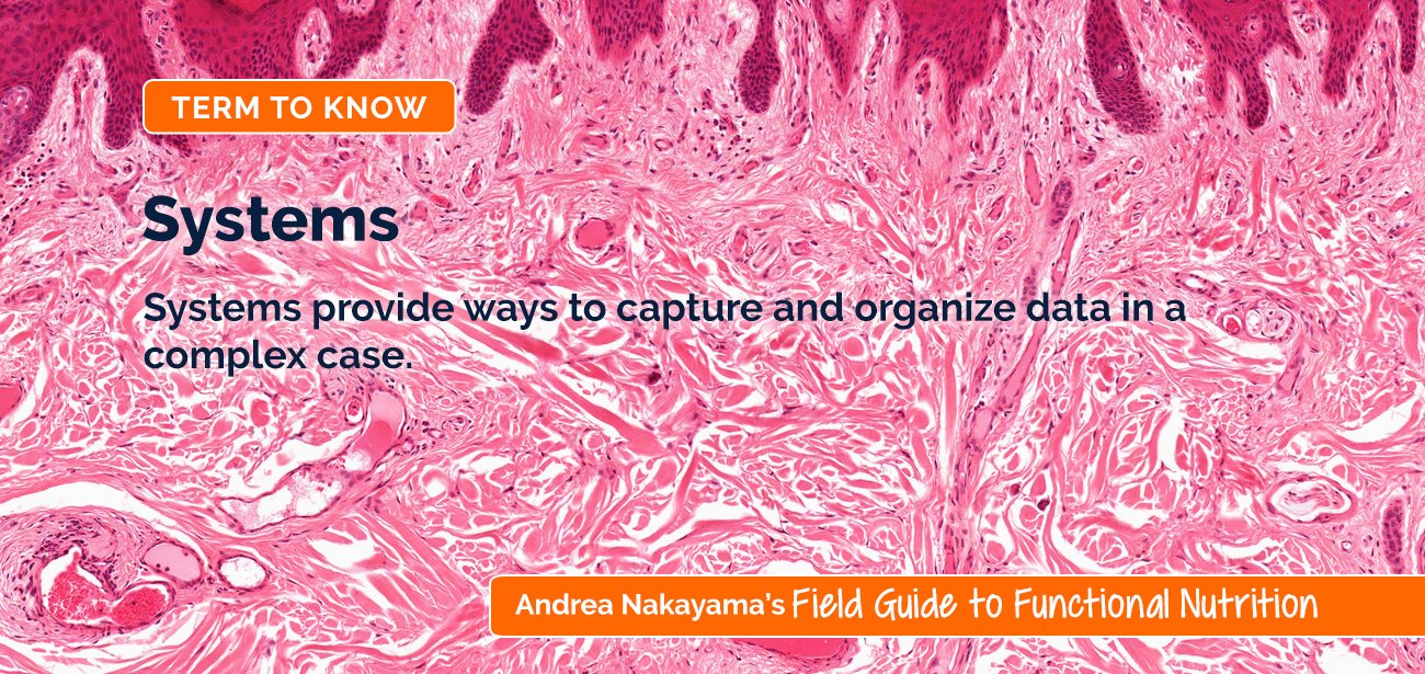 Andrea Nakayama's Field Guide to Functional Nutrition | Systems