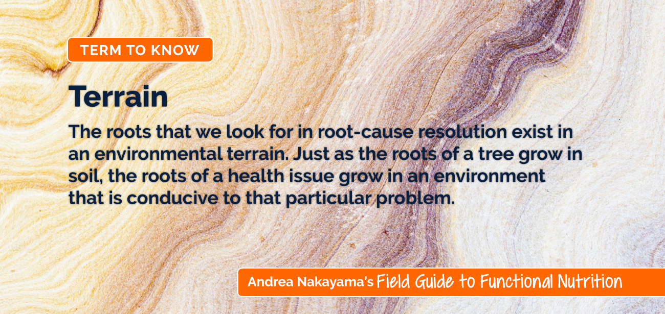 Terrain | Andrea Nakayama's Field Guide to Functional Nutrition
