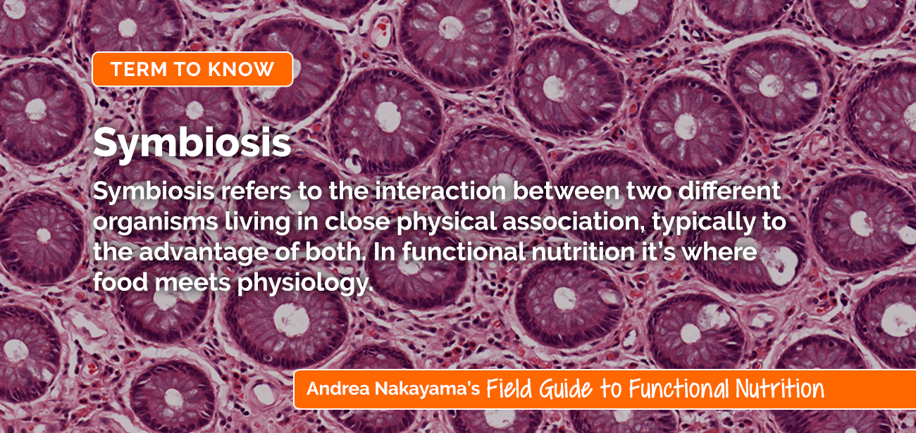 Symbiosis | Andrea Nakayama's Field Guide to Functional Nutrition
