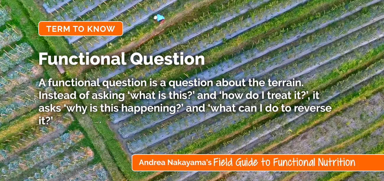 Functional Question | Holistic Nutrition Lab by functional nutritionist Andrea Nakayama