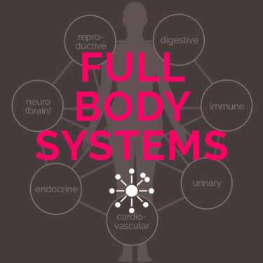 Full Body Systems