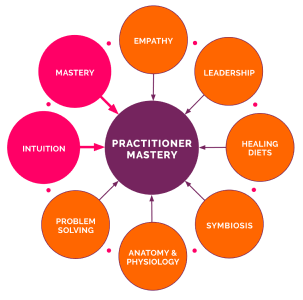 FxNA practitioner mastery