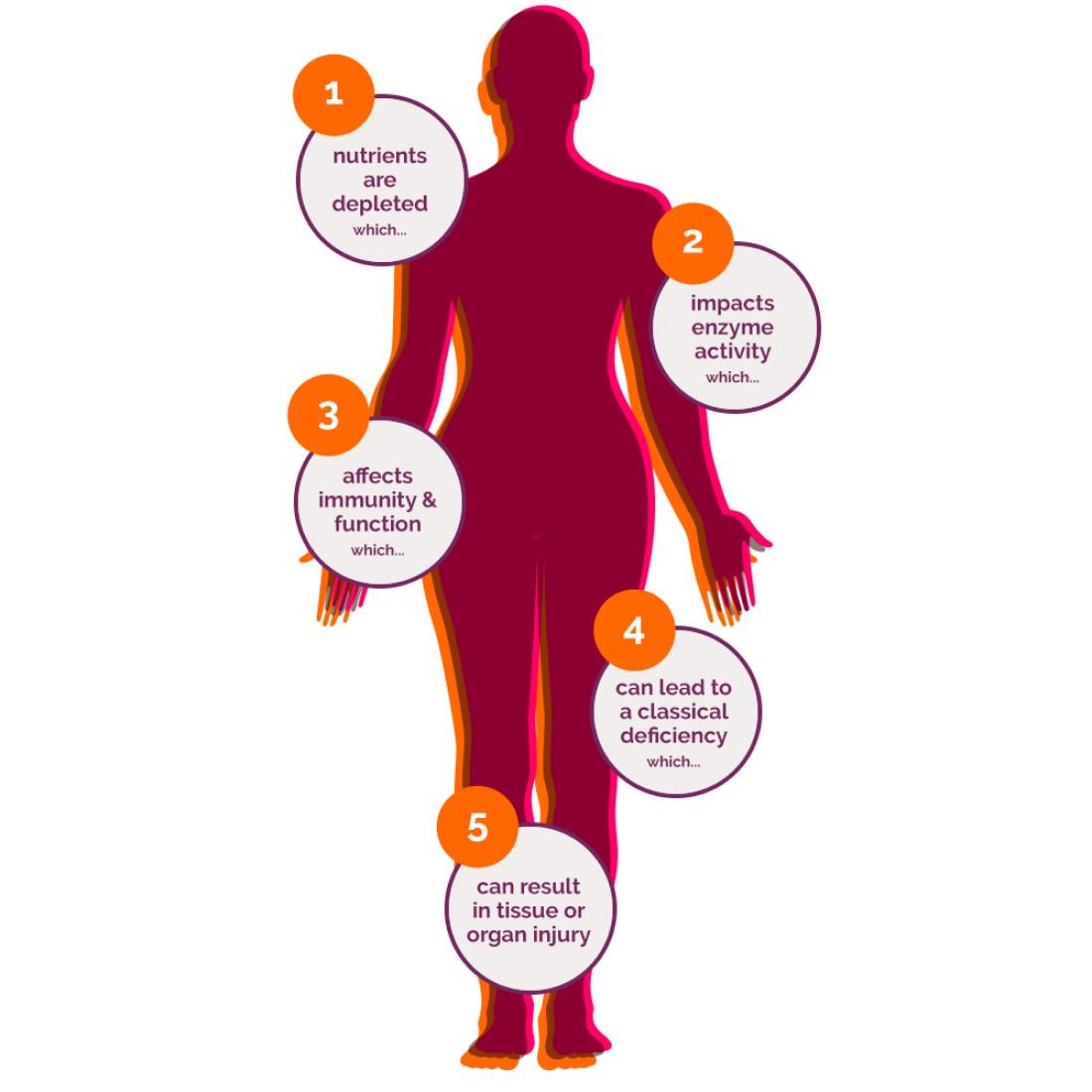orthomolecular body